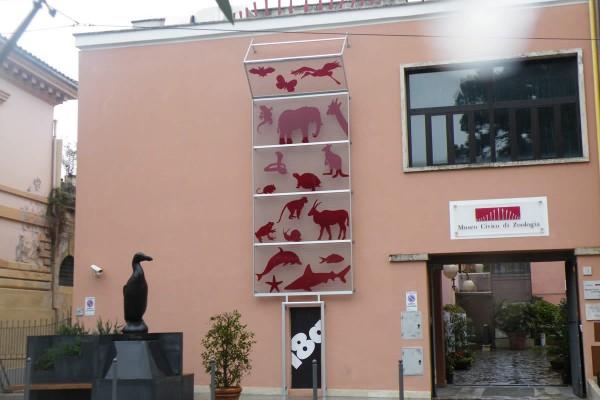 Museo Zoologico di Roma