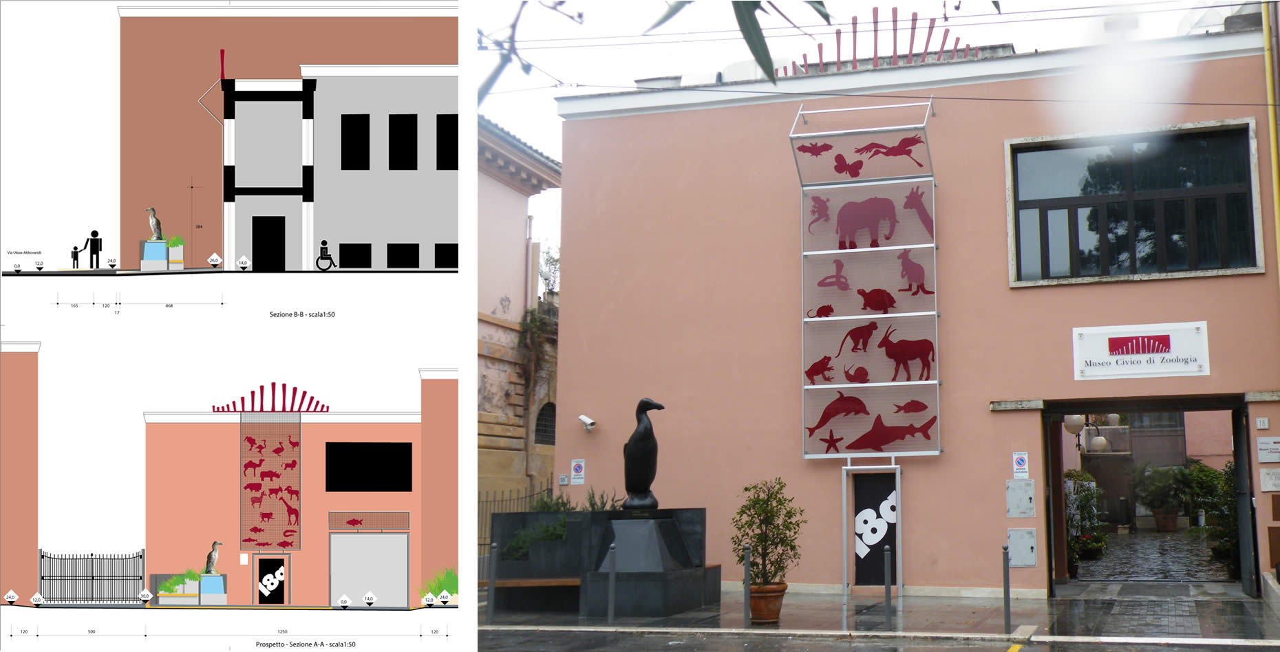 Allestimento esterno Museo Zoologico di Roma